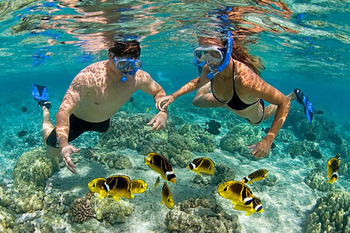 Bơi ngắm san hô tại Hòn Mun