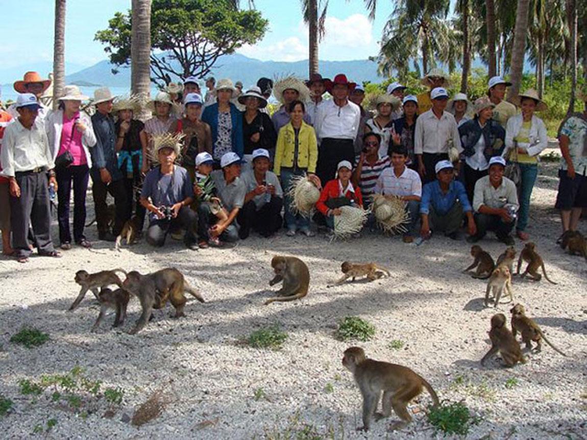 (Những chú khỉ thân thiện với du khách)(Chế biến chiến lợi phẩm)